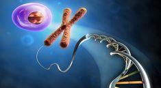 ساختار DNA یا آنچه سبب ماست چگونه است؟ یا با DNA آشنا شویم (بخش دوم – ساختار DNA)