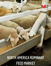 Ruminant Feed Market