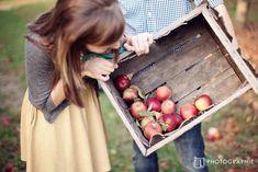 L Photographie St. Louis Engagement Photos apple orchard