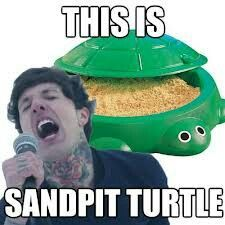 This is sand pit turtle. Recently I've seen people getting this tattooed; the little turtle sand pit and Sempiternal beneath it.
