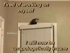 Fb Memes, Funny Memes, Hilarious, Jokes, Funny Sarcasm, Laura Lee, Tired Of Work, Opossum, Dark Memes
