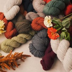 Our core wools: Fall colors for days.  #quinceandco