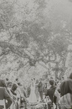 Woodson Castle Wedding Photography san diego wedding photography Alon has done over 50 wedding at Mt. Woodson Castle check the amazing wedding images Beach Wedding Photography, Engagement Photography, Sunset Beach Weddings, San Diego Beach, Top Wedding Photographers, Wedding Images, Wedding Ideas, Beach Engagement, San Diego Wedding