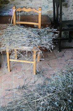 loads of lavendar at the perugia farm house ∆ umbria italy | life on pine |  travel & adventure blog