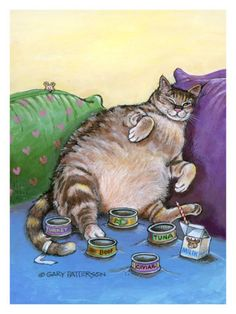Aimee definitely eats too many cans of Fancy Feast Florentine a day!
