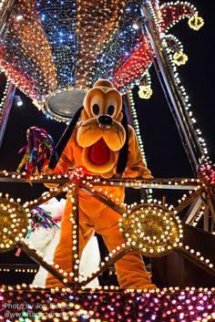 2014 - Tokyo Disneyland Electrical Parade Dreamlights