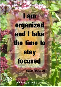 122 I am organized and I take the time | A Sunlit Walk