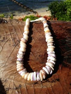 Hand Collected Hawaiian Puka Shell Necklace on Etsy, $30.00