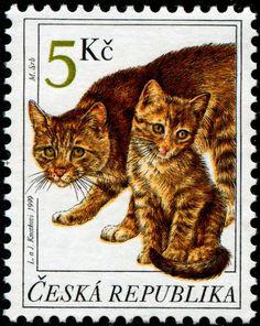 "Postage stamp designed by the Czech artists Libuše Knotková and Jaromír Knotek (b. who sign their joint art works as ""L. Postage Stamp Design, Vintage Stamps, Domestic Cat, Cat Drawing, Stamp Collecting, Poster, Cat Art, Pet Birds, Mammals"