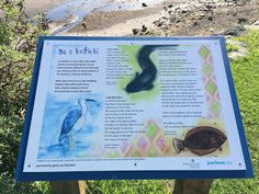 From The Current 1 a nature art journal by children in the Porirua Harbour catchment Kids Writing, Creative Writing, School Programs, Fiction Writing, Nonfiction, Poems, Encouragement, Writer, Journal