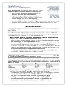 professional resume samples professional business resume template - Sample Professional Resumes