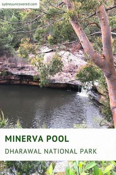 Australian Holidays, Best Swimmer, Pool Signs, Holiday Places, Beautiful Waterfalls, Australia Travel, Day Trips, Walks, Sydney