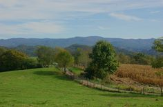 Fall 2013 Cedar Grove in Southwest Virginia