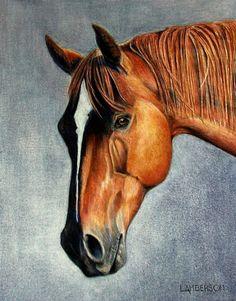 Horse in Colored Pencil. Original Artwork.