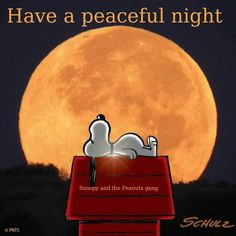 Have a peaceful night - Snoopy