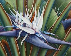 White Birds of Paradise Painting by Barbara Ann Robertson