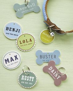 DIY pet ID tag