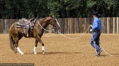 Clinton Anderson's solutions for dealing with the pushy or spoiled horse.