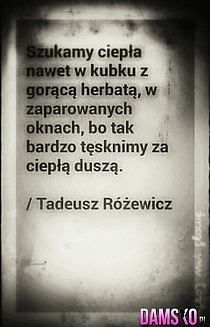 Stylowi.pl - Odkrywaj, kolekcjonuj, kupuj Romantic Quotes, Motto, Daily Quotes, Cool Words, Quotations, Poems, Funny Quotes, Inspirational Quotes, Wisdom
