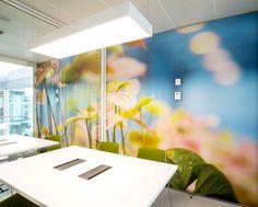 akoestische fotowanden voor stilte ruimtes en vergaderruimtes