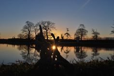 Wood Sculpture in the sunset at Kingweston,