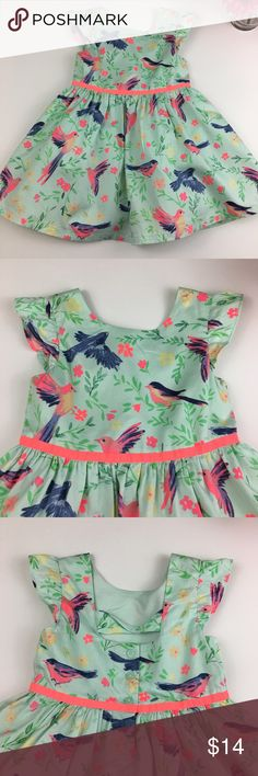 Mint Green Dress with Birds & Flowers Design Mint Green Dress with Birds & Flowers Design.  Dress has double lining. Adorable dress! Pre-owned, excellent condition. Cherokee Dresses