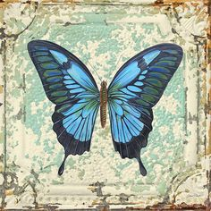 Lovely Blue Butterfly On Tin Tile by Jean Plout - Lovely Blue Butterfly On Tin Tile Painting - Lovely Blue Butterfly On Tin Tile Fine Art Prints and Posters for Sale Vintage Butterfly, Blue Butterfly, Kunstjournal Inspiration, Tin Tiles, Butterfly Pictures, Ad Art, Decoupage Paper, Beautiful Butterflies, Vintage Paper