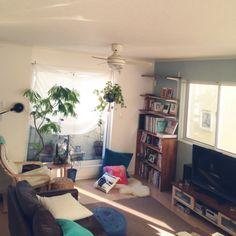 hidamariさんの、リビング,観葉植物,本棚,IKEA,DIY,絵本,ニトリ,プフ,生活感,ワトコオイル,セルフペイント,イマジンウォールペイント,本棚DIY,しかしあまり読書はしない,のお部屋写真