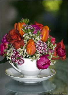 Sweet William, tulips, and ranunculus in a cup and saucer.