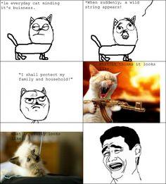 Kitty Rage