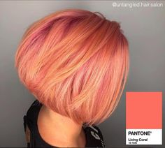 🍹Summer Peach Bellini🍹by Meryl Smith. Peach Bellini drink recipe and product info 👇🍑👇 . Coral Hair Color, Pink And Orange Hair, Peach Hair Colors, Cute Hair Colors, Pink Hair, Xenia, Peach Bellini, Hair Affair, Colorful Hair