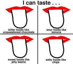 sense of taste activit...