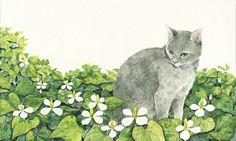 image by Midori Yamada : Amazing, lovely illustrations.