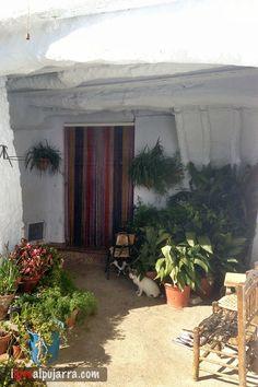 Rincón de Notáez Love, Plants, Plant Pots, Amor, Plant, Planets
