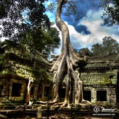 #TravelStories: 'Angkor Wat Temple' in #Combodia is the largest religious monument in the world! Repin