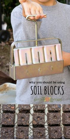 Soil blocks give seedlings the best start...but that is not why you should use them! #gardening #gardentherapy #garden #soilblock #seedstarting