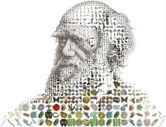 Charles Darwin:  publisher of one of the greatest books of all time ::: On the Origin of Species