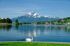 Lake of Lucerne - Vierwaldstättersee and Pilatus