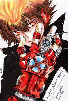 Manga:  Katekyo Hitman Reborn! One of the biggest character transformations, and coolest!