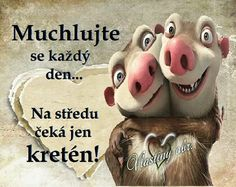Muchlujte se každý den, na středu čeká jen kretén! Motto, Quotations, Diy And Crafts, Thats Not My, Funny Pictures, Jokes, Teddy Bear, Animals, Inspiration