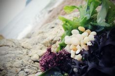 파도리 해변, 태안, 대한민국 (Padori Beach, Taean, South Korea)