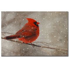 'Cardinal in Winter' by Lois Bryan Photographic Print on Canvas