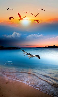 Beautiful Nature Pictures, Beautiful Nature Wallpaper, Beautiful Sky, Amazing Nature, Nature Is Speaking, 4 Images, Wild Weather, Photo Montage, Sky Landscape