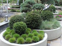 Therese Knutsen | CREATIVE PLANTERS