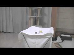 Лучшие видео Смешнои кот сходит с ума