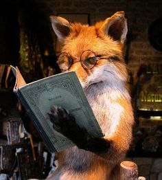 Fox wearing eyeglasses and reading a book art I Love Books, Good Books, Books To Read, Animals And Pets, Funny Animals, Cute Animals, Wild Animals, Baby Animals, Fuchs Baby