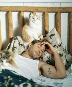 Chris Hemsworth and some cats