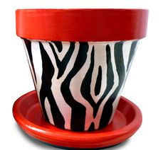 Zebra Animal Print Planter 8 inch pot by MicheleCordaroDesign, $22.00