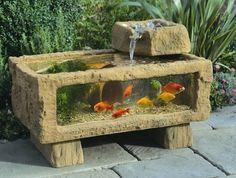 outdoor aquarium with fish. I want this!