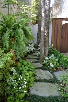 Landscape Design - traditional - landscape - dallas - Brumley Gardens